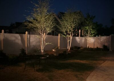 southern-greenscapes-night-lights2